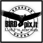 Birdpix.Lt