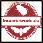 Insect trade